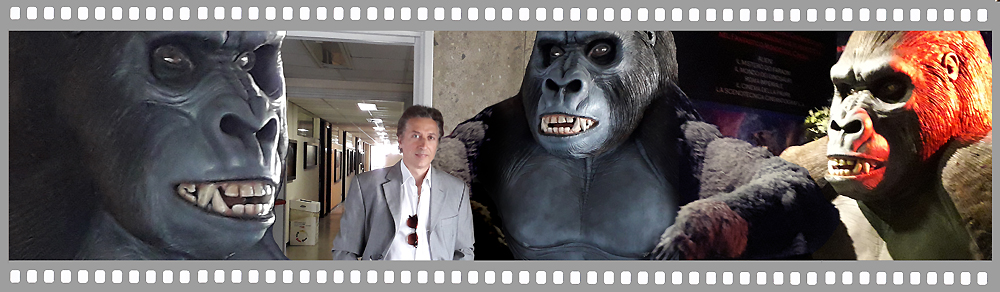 King Kong Paolocci Effetti Speciali